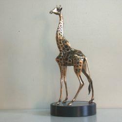 BullGiraffe