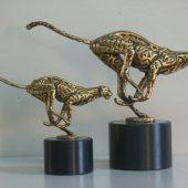 K_Cheetah01 (1)